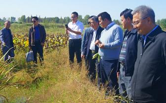 中国农垦经济发展中心领导调研朱湖国家湿地公园