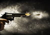 美国一高中生校园内遭枪杀 另一名学生被拘捕