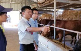 桂林灌阳县拨付1.22亿元盘活村集体经济