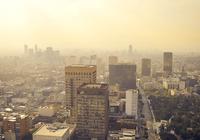 全球93%儿童呼吸有毒空气 可阻碍大脑发育