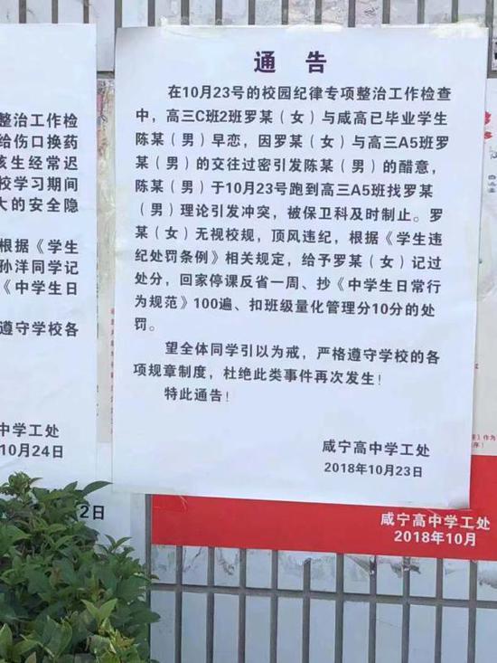 咸宁高中10月23日发布对本校高三女生罗某的处罚通告。咸宁当地人士提供