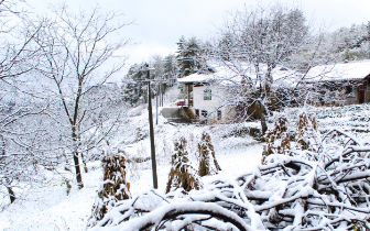 下雪啦!广元朝天迎来入冬第一场雪