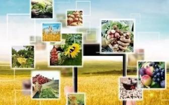 宜州入选全国农村三产融合发展先导区