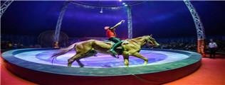 英国皇家国际马戏团,空降义堂加州小镇