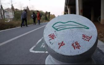 """骑行也是一种浪漫,婺城这条""""星光绿道""""等你来!"""