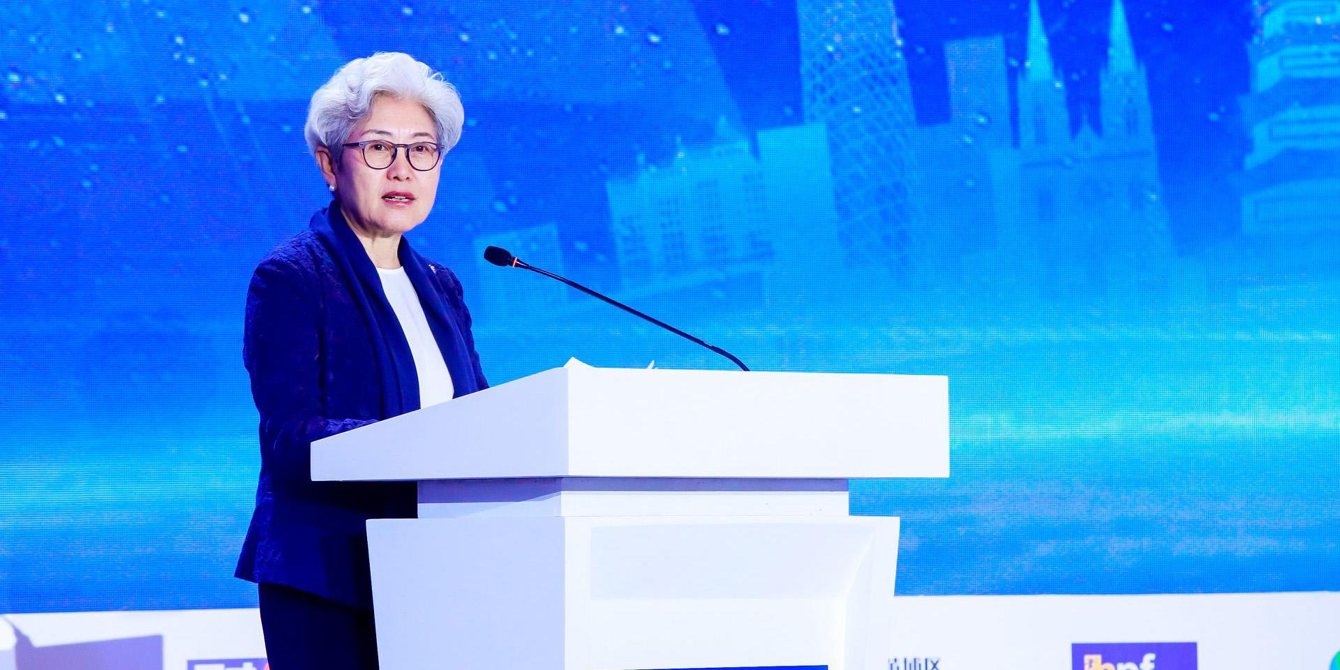 傅莹:改进国际传播,更充分地表达和传播中国故事