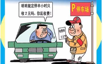 南昌两名山寨收费员被抓 网友称非法停车位大量存在