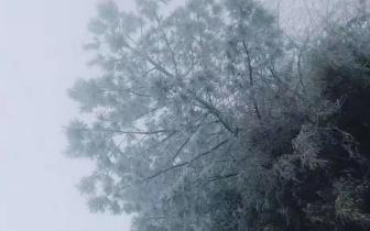 立冬时节 气温骤降凉山多地迎来今年第一场雪