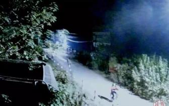 孝昌17岁女孩凌晨骑自行车出门后失联......