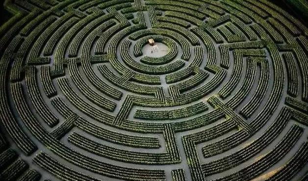 一入迷宫深似海 盘点世界上最有名的十大植物迷宫