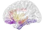 美研究: 抑郁可通过脑部扫描诊断治疗
