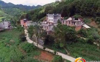 兰廷村:发展特色健康产业 助力群众增收脱贫
