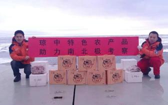 """""""琼中畜牧""""优质食材再登中国极地科考中心"""