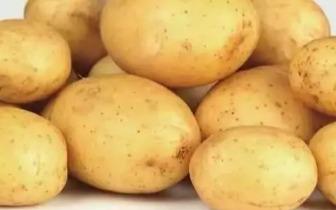 土豆浑身都是宝!爱吃土豆的人 一定要看看