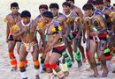 巴西土著文化盛会