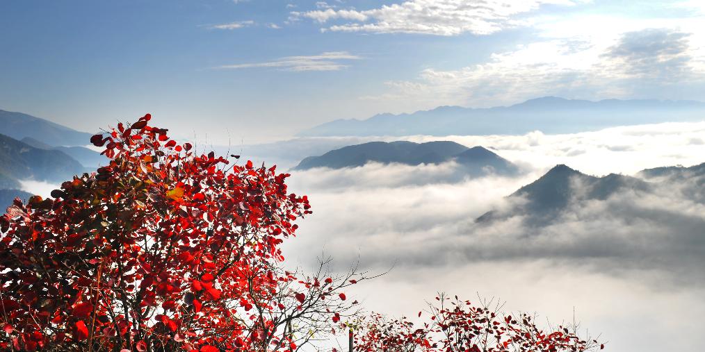第十二届中国·重庆长江三峡(巫山)国际红叶节开幕