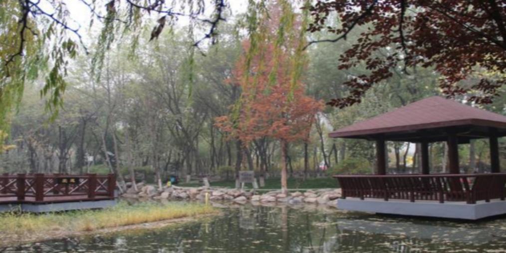 石家庄槐北公园完成提升正式开园迎客
