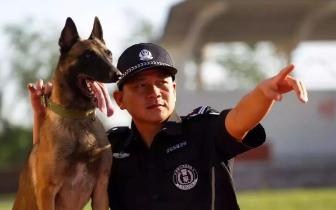 进击的唐山警犬——全国警犬技术比赛第三名