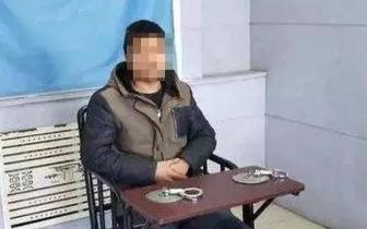 违法|一网民因微信发布焚烧病猪虚假信息 被行政处罚
