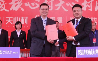 中国银行南平分行:创新金融服务助力茶产业发展