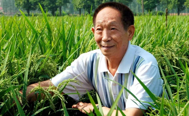袁隆平:希望杂交水稻遍布世界