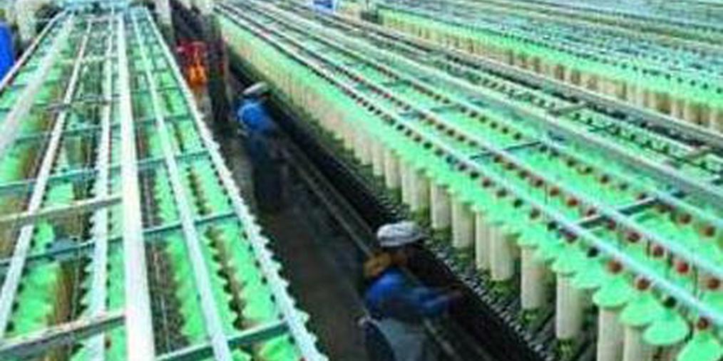 山东支持民营经济高质量发展