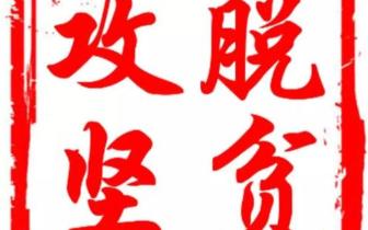"""琼中""""80后""""返乡创业女青年蔡晓玲解农产品销售难题"""