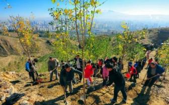 绿化|大规模国土绿化行动:2020年森林覆盖率须超