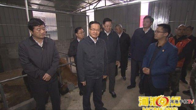 自治区主席陈武深入都安大化指导脱贫攻坚工作