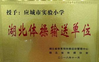"""应城市实验小学荣获""""湖北体操输送单位"""""""