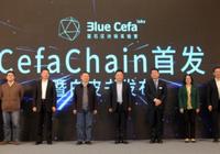《蓝石区块链技术白皮书》发布,区块链平台亮相