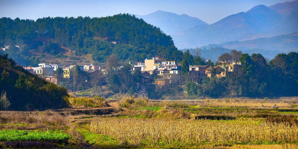 农村空置宅基地3千万亩 专家建议允许城里人购买