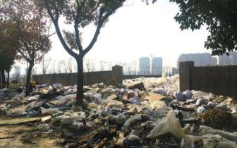 安家小村垃圾得到及时清理