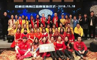 杨梅红国际私立美校:给孩子一个智慧而有品位的人生