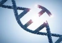 利用CRISPR/Cas9增强基因疗法治疗遗传病的潜力