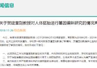 南方科技大学:贺建奎已停薪留职 基因编辑婴儿