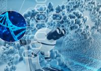 Nature:CRISPR能否修复人类胚胎中的基因突变?