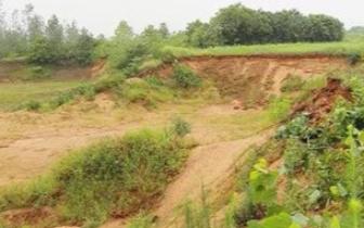 孝感市组织开展河砂资源禀赋调查