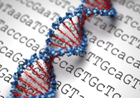 人类真的对CRISPR-Cas9基因编辑工具存在免疫力