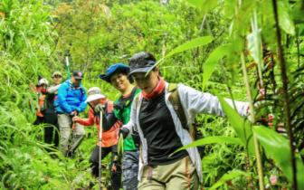 不抛弃 不放弃 2018海南热带雨林挑战赛激战正酣