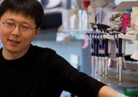 专访基因编辑技术规则制定者张峰:目前不应用于