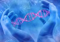 科技部回应基因编辑婴儿事件:这是明令禁止的