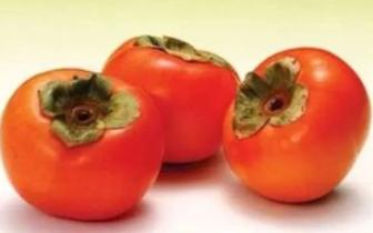 空腹吃了一颗柿子,78岁老人肠梗阻