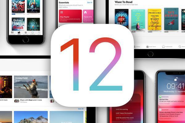 iOS 12.0.1验证通道关闭