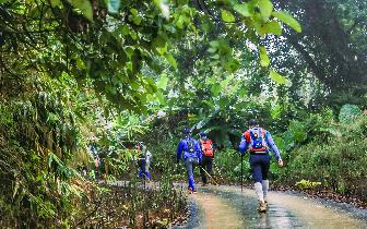 跨越巅峰涅槃重生 雨林徒步完美收官