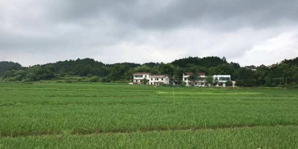 乡村旅游让湘乡壶天古村焕发生机
