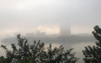 内江今晨局部出现能见度小于50米大雾 内威荣、内宜等高速全线关