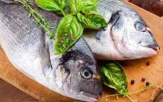吃了鱼这个部位,男子多器官严重衰竭,差点丢命