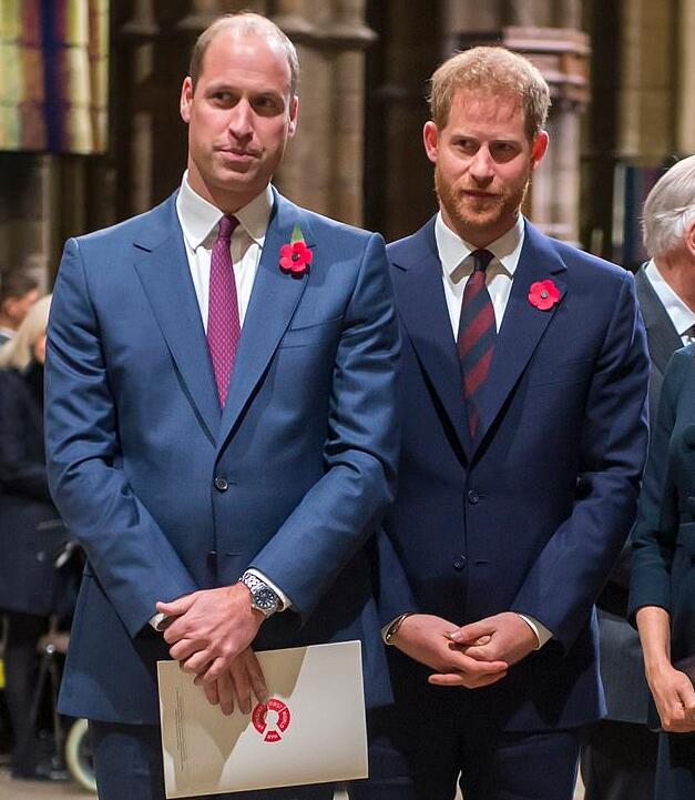 英国媒体曝威廉哈里兄弟不和 查尔斯王子出面调解