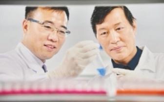 武科大教授的艾滋病治疗新方法获首例专利